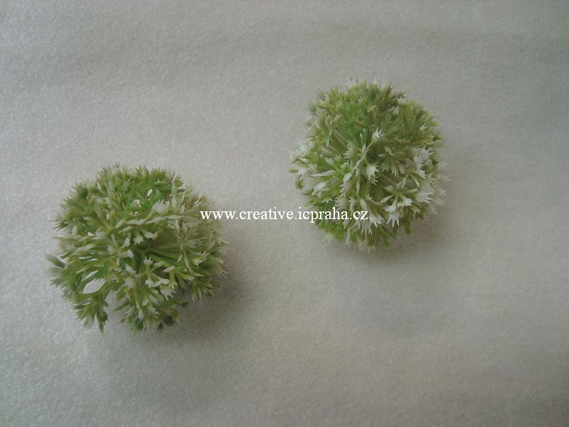 česnek - kulička květ bílý