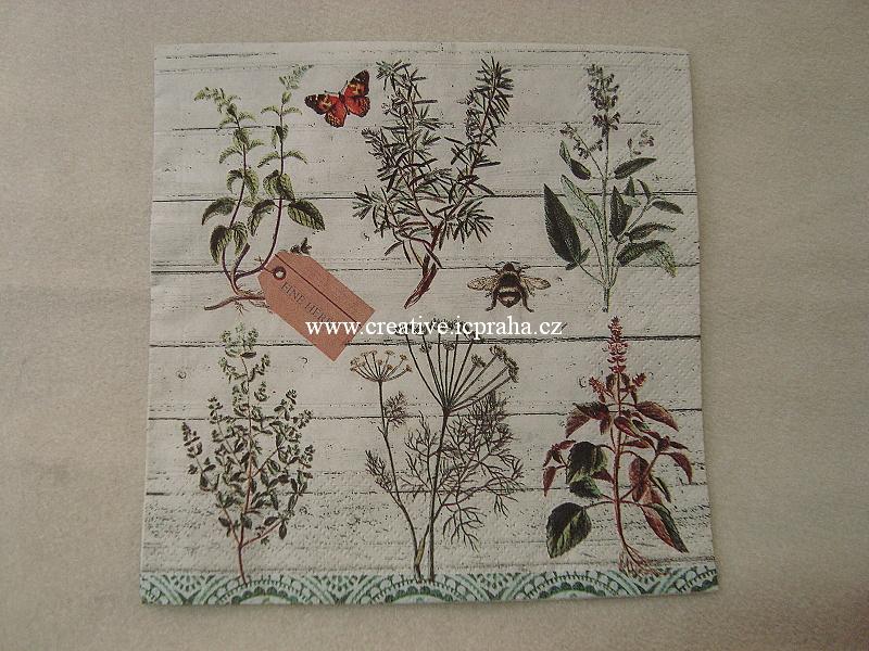bylinky - Herbář  HOME