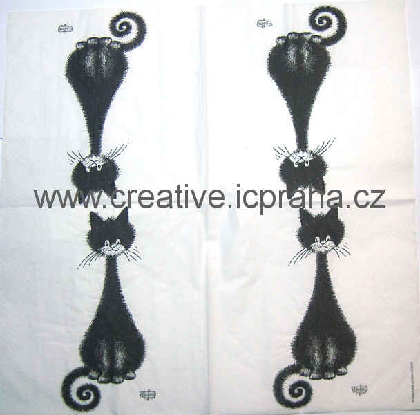 černá kočka EC
