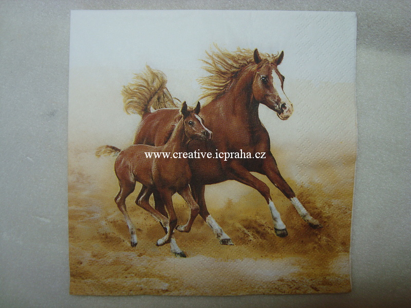 koně MAKI