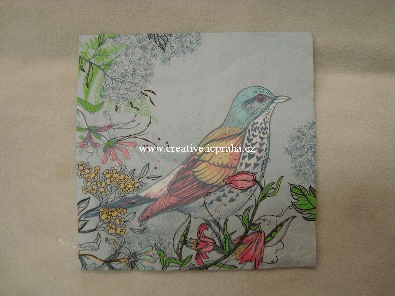 ptáček s pestrými pírky MAKI
