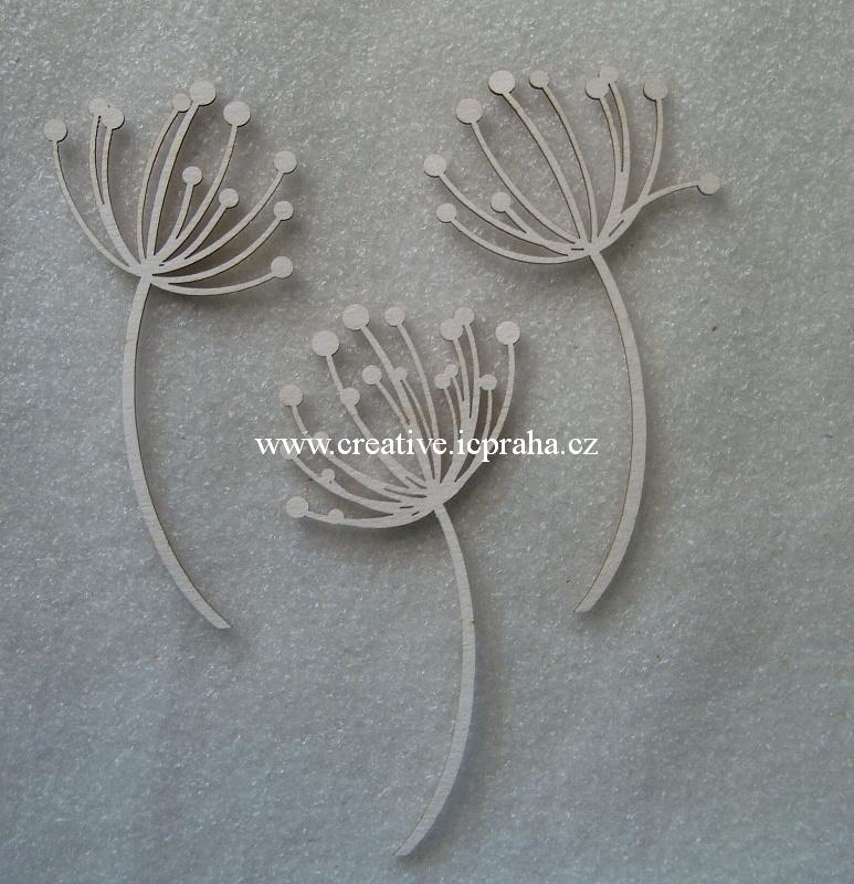 výřezy květenství Okolík 4ks  8,5x4cm