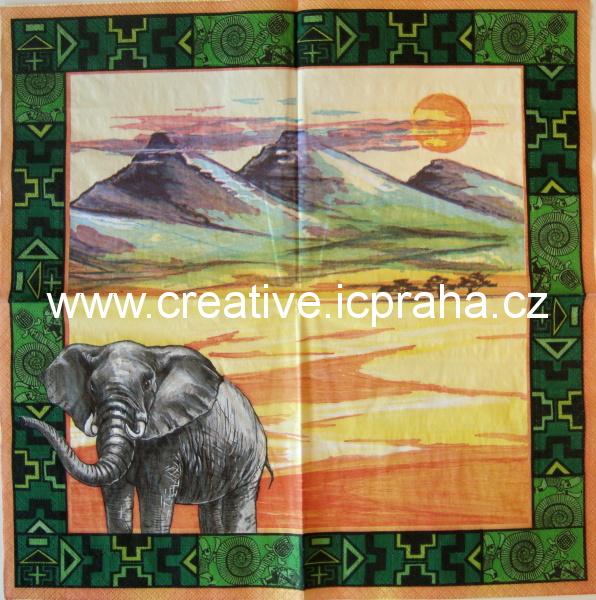 Afrika - slon  AHA