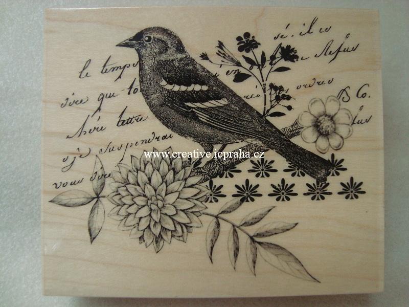 raz. dřevěné Hero Arts - Ptáček a psaní 9x7cm