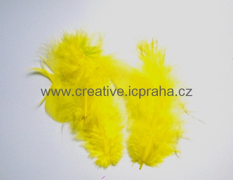 barev.peří žluté sv. - bal. 10ks