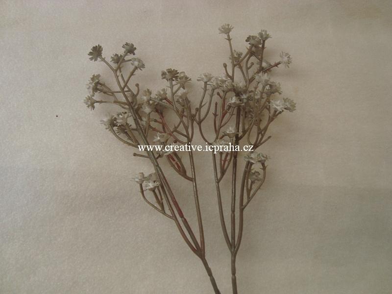 větvička - bílé kvítky