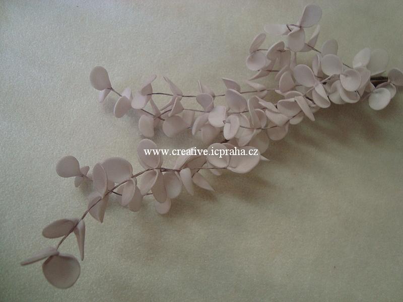 eukalyptus pryž - růžová sv.