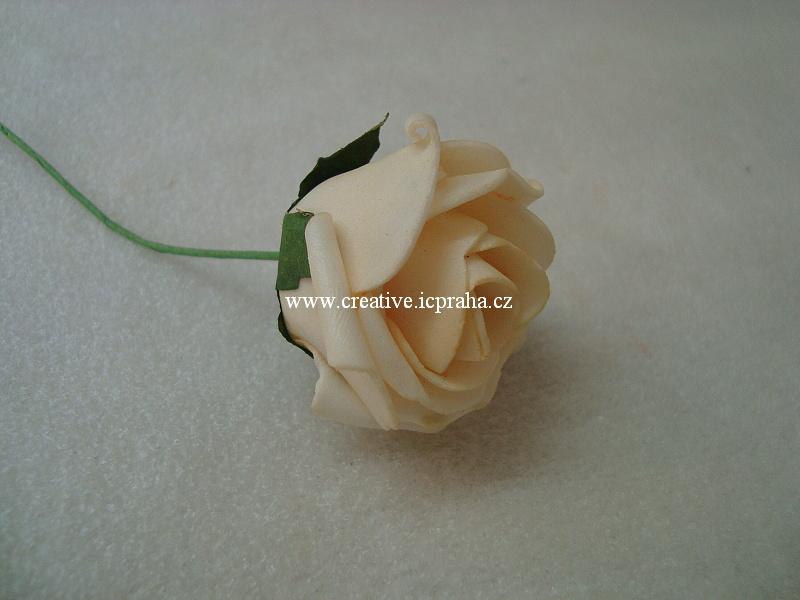 pryž - růže meruňková květ.vel cca3,5x5cm