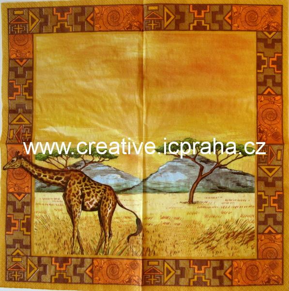 Afrika - žirafa  AHA