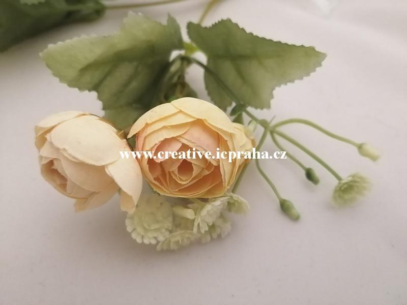 kamélie meruňka větv. -  květ 2cm