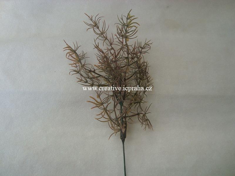 větvička - travnatá