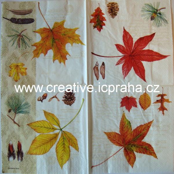 listy podzimní + 4 pírka  AMB 5025