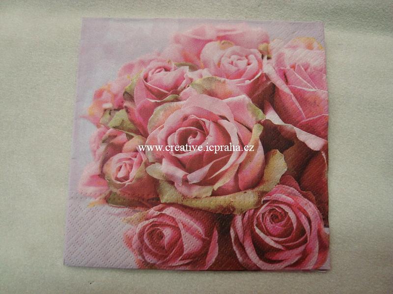 růže TETE PAW