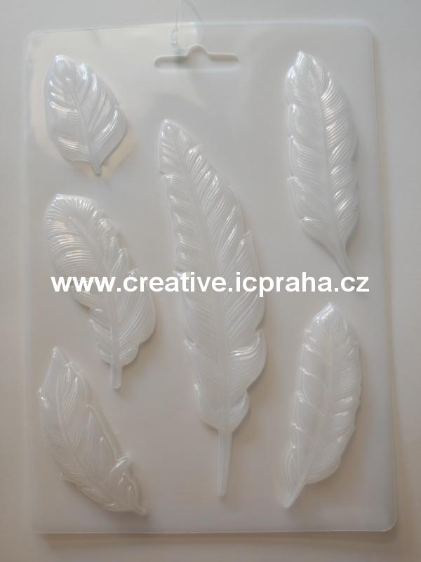 textura Lisa Pavelka - Květy 2 054