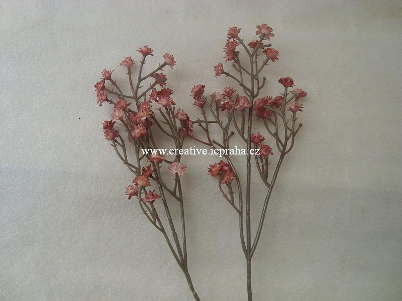 větvička - růžové kvítky