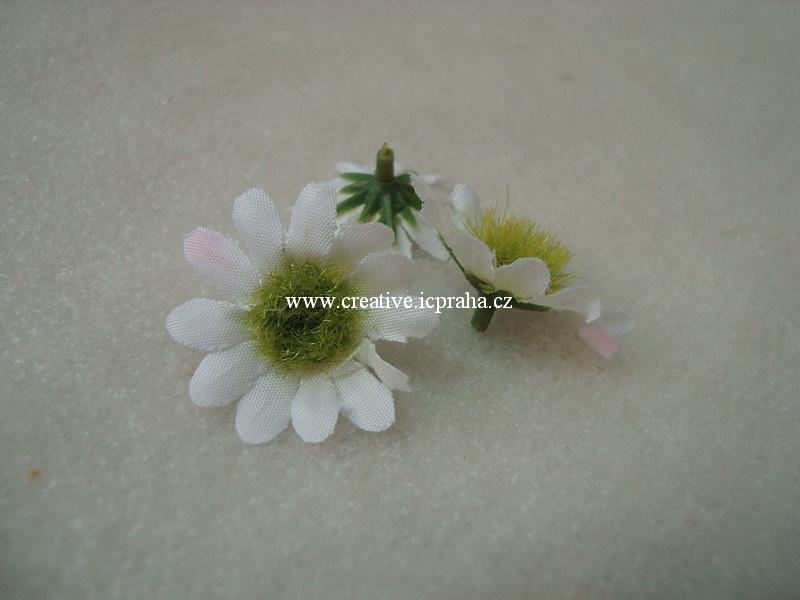květ minikopretina 2,5cm