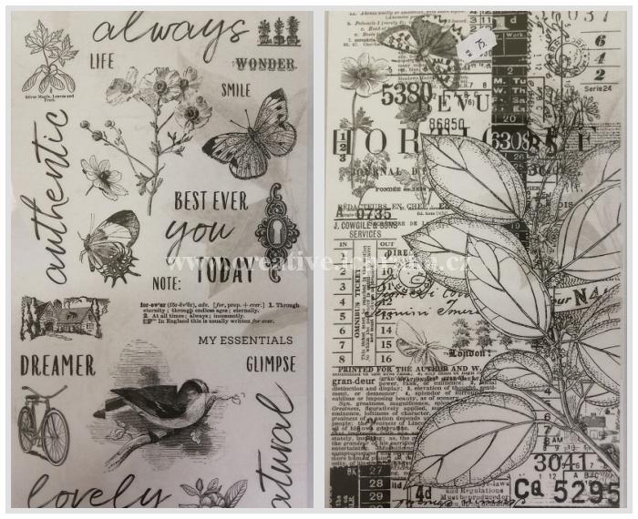 Washi páska - psi 1,5cmx10m