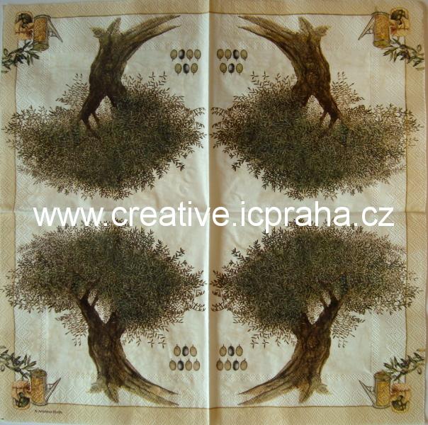 olivovník AMB4895