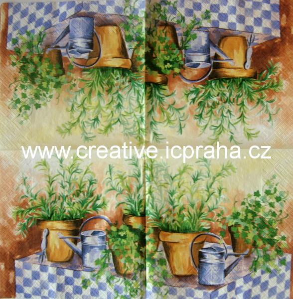 bylinky a dvě fialové konve  DECORATA