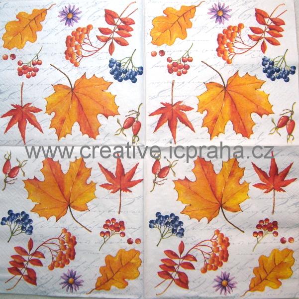 podzimní listy a plody ATELIER