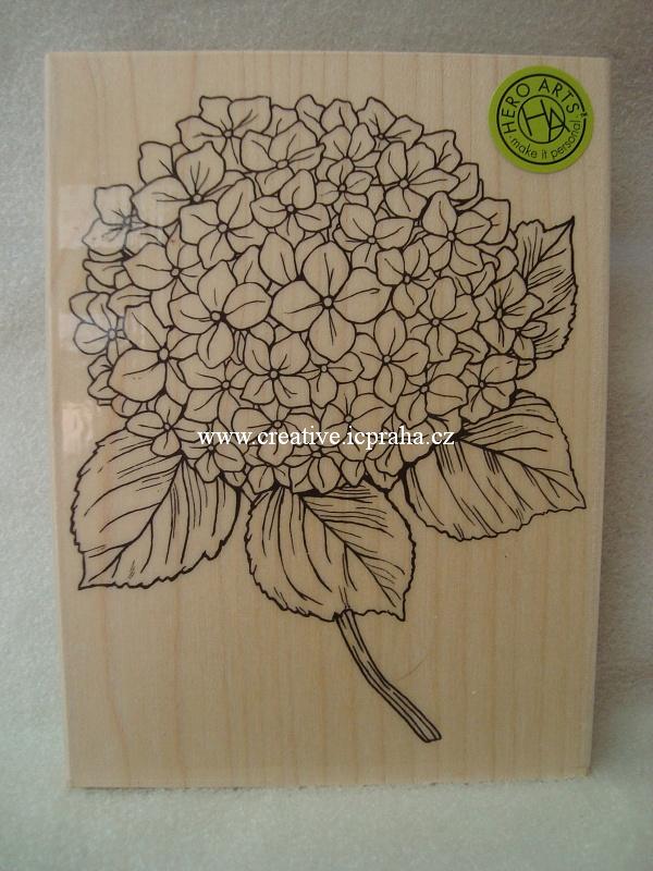 raz. dřevěné Hero Arts - Hortenzie 9x12cm