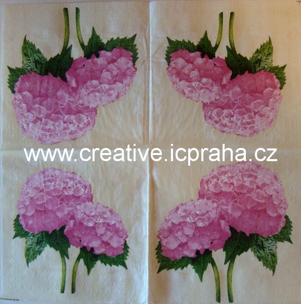 hortensie růžová  AMB5162
