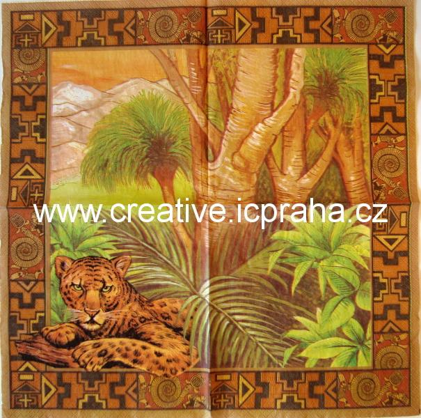 Afrika - gepard  AHA