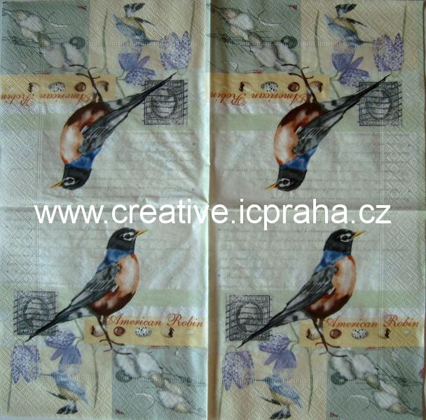 American Robin PAPER+DESIGN