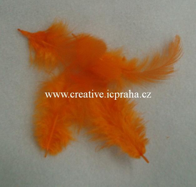 barev.peří oranžové sytě - bal. 10ks