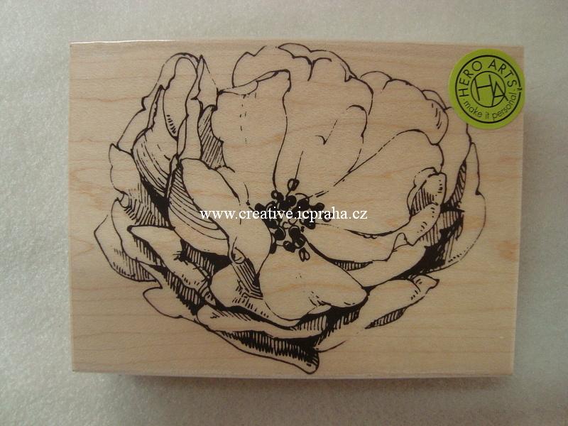raz. dřevěné Hero Arts - Růže antik  9,5cm